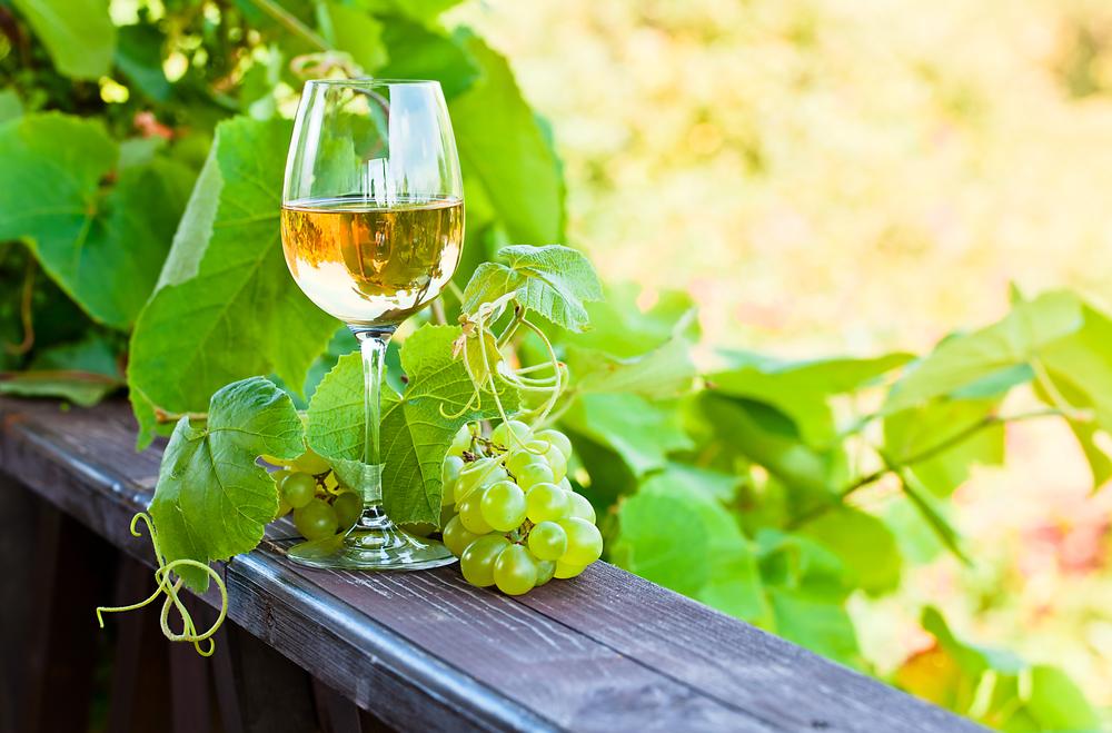 Une introduction aux vins blancs