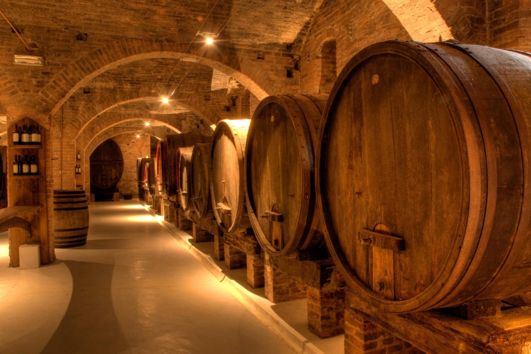 Conservation de vin en cave
